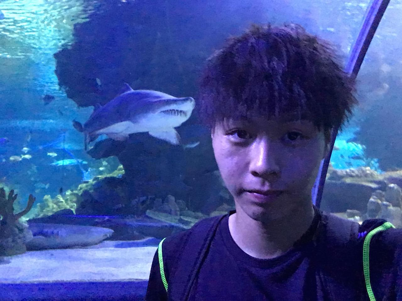 バックパッカーがマレーシアで1日に使った費用は?【11日目KLCC水族館に行く】