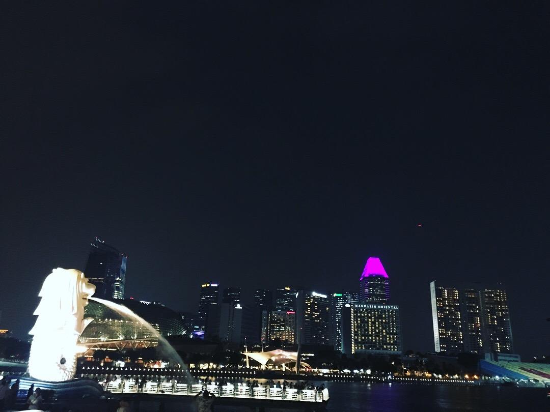 バックパッカーがシンガポールで1日に使った費用は?【16日目シンガポール入国】