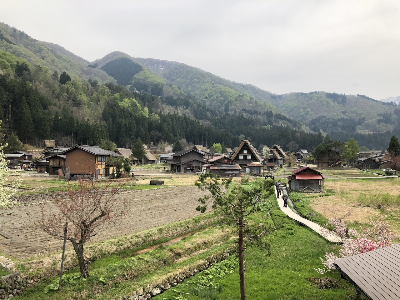 富山県の「相倉合掌造り」と岐阜県の「白川郷」どちら共に行って比較してみた